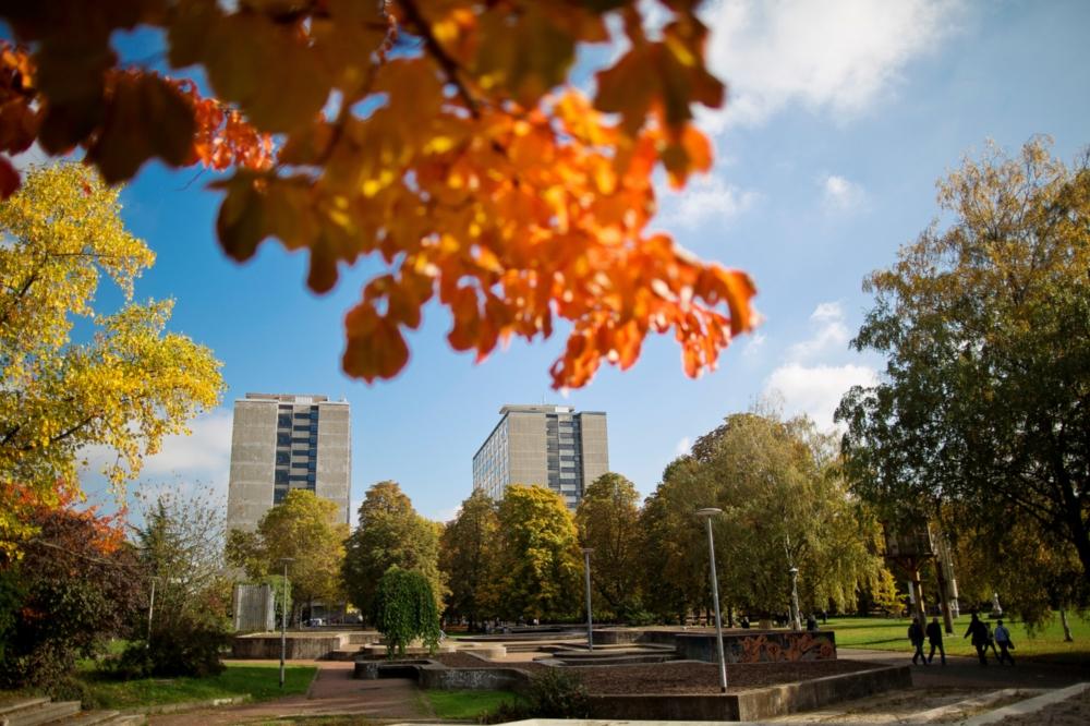 Bibliothek des Betriebswirtschaftlichen Instituts wieder geöffnet